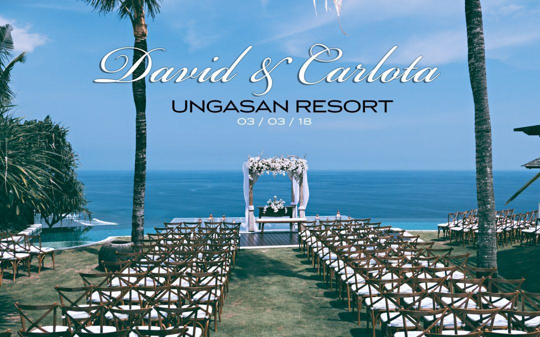 David-Carlota-by-Michelle-Pastel-best-Bali-wedding-photographer